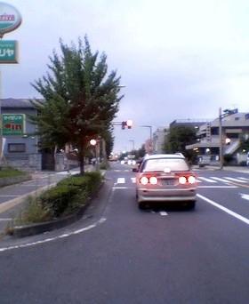 P1000035_1